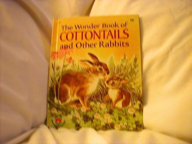 The Wonder Book of Cottontails and other Rabbits, #852