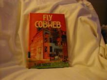 Fly Cobweb