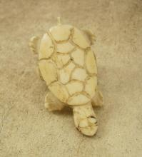 Primitive CARVED Figural RING Huge Old CHINESE Bizarre Turtle