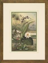 New Print Anonymous Reproduction Framed Flowers Plants Water Lilies Rectan WA-10