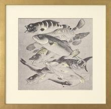 New, Large Fine Art Giclee Print, Japanese Fish Carp Koi, Reproduction, Framed
