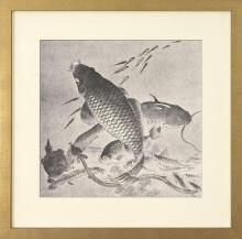 New Giclee Print Audsley amp Bowes Reproduction Framed Fish Japanese Carp WA-132