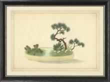New Print Anonymous Reproduction Framed Trees Large Zen Gardens Rectangle WA-85