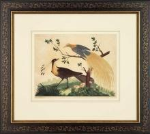 New Artwork Vittorio Ranier Reproduction Framed Wildlife Chinoiserie Bird WA-433