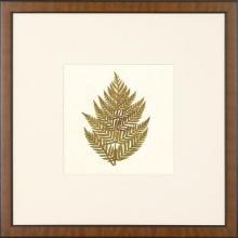 New Print Anonymous Reproduction Framed Flowers Plants Squared Ferns Recta WA-33