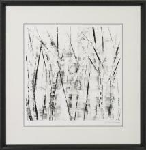 New Original Art Print, Sharon Gordon, Birch Trees, Black/White, Signed/Numbered