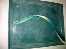 Cactus leave French artist Beautiful