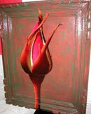 Red Rose  signed