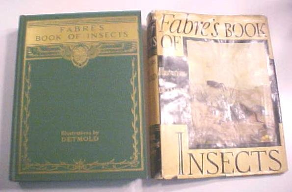 Fabre's Book of Insects Illus by Detmold 1937