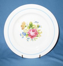Canonsburg Pottery 2704 luncheon plate