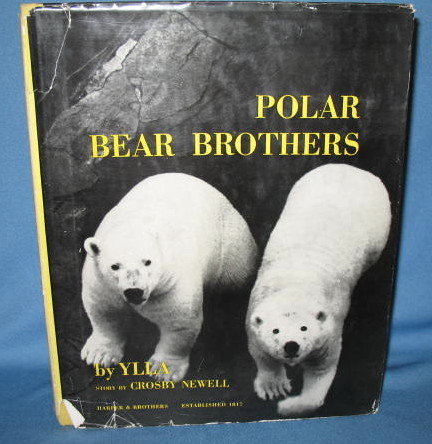 Polar Bear Brothers by Ylla