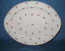 Homer Laughlin Nautilus Cardinal large oval platter
