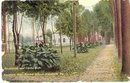 Promenade and Canna Beds, Keystone State Normal School, Kutztown , PA  color postcard