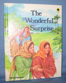 The Wonderful Surprise by Martha Marshall