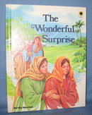 The Wonderful Surprise by Martha Marshall