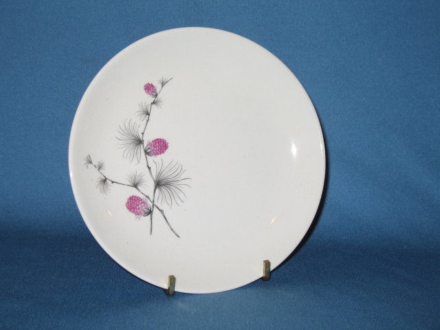 Canonsburg Pottery Wild Clover bread plate