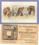 Wm. H. Greenwald & Son, Allentown PA advertising card