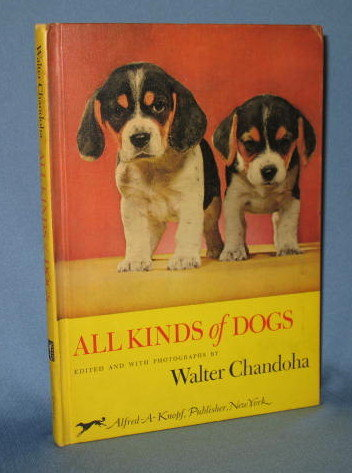 All Kinds of Dogs by Walter Chandoha