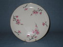 Diamond China Cherry Blossom dinner plate