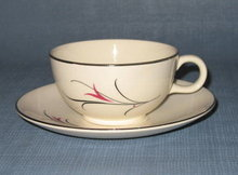 Salem China Serenade cup and saucer