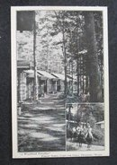 A Woodland Paradise, Forest Acres, Camp for Girls, Fryeburg ME  postcard