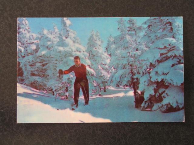 Skiers at start of Taft Slalom Trail, Franconia Notch, NH postcard