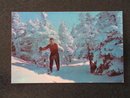 Skiers at start of Taft Slalom Trail, Franconia Notch, NH postcard