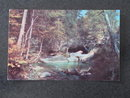 The Basin and Old Man's Foot, Franconia Notch, NH postcard