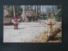 Florida's Silver Springs - Seminole Village at Ross Allen's  postcard