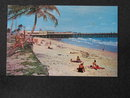 Sun and Surf Bathing at the Palm Beaches, Florida postcard