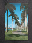 Beautiful Lake Trail along the Palm Beach Yacht Basin, Palm Beach, Florida postcard