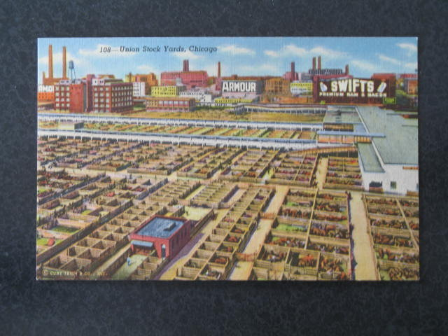 Union Stockyards, Chicago, IL postcard