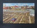 Union Stockyards, Chicago, IL postcard