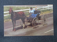 Amish Courting Buggy, Witmer,  PA postcard