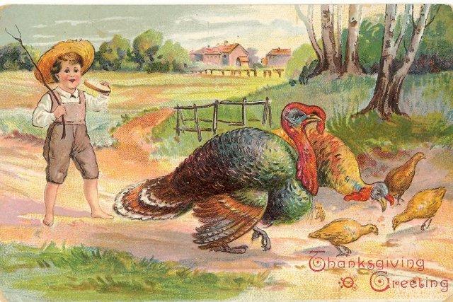 Thanksgiving Greeting postcard