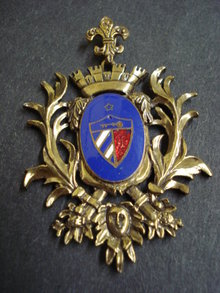 Unique Large Brooch