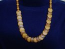 Uncommon Amber Necklace Two Tone