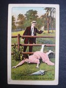 Comic Romantic  Postcard