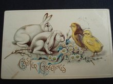Easter Postcard - Adorable - Easter Greetings