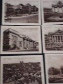 Souvenir Real Photo of Brussels Belgium