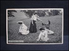 1906 Real Photo Postcard Forest Flowers