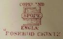 Copeland Spode Lge. Dinner Plate ROSEBUD CHINTZ
