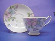 Salisbury Crown China Cup & Saucer