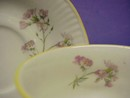Elizabethan Staffordshire Cup & Saucer Hand