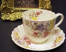 COPELAND SPODE CHINA TEACUP /SAUCER - FAIRY DELL