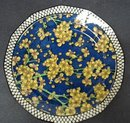 RARE ROYAL DOULTON CHINTZ PLATE