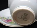 Superb  FOLEY China CUP and SAUCER  FOLEY TULIP