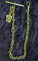 Wondeful ANTIQUE WATCH CHAIN with Unique Fob