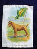 CIGARETTE SILK IRISH TERRIER IRELAND