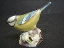 Royal Worcester Bird Figurine Tiny Bird